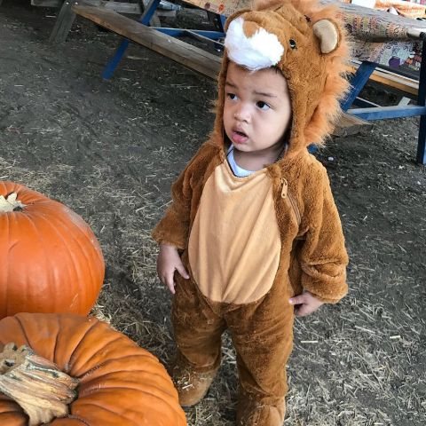 Jru Scandrick in Lion Costume.